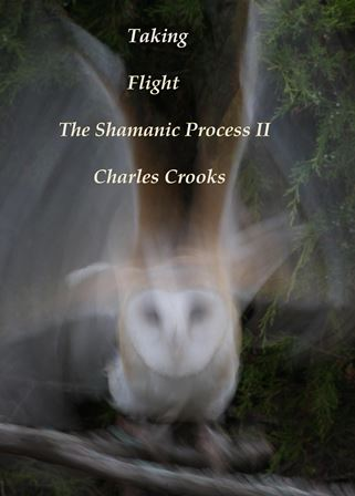 Cover, The Shamanic Process II